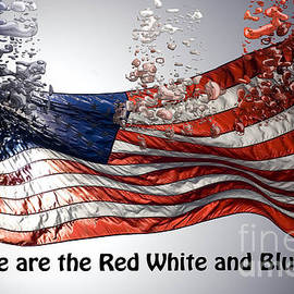 The Red White and Blue  by Beverly Guilliams