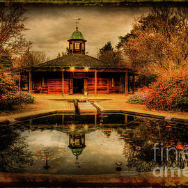 Darren Fisher - The Reflection Pool