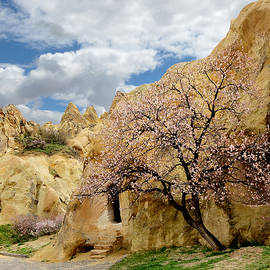 Yuri Hope - The residential mansion of the Ancient Cappadocia. Central Turkey