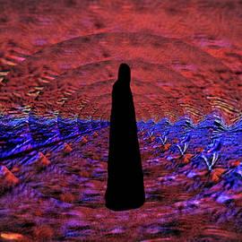 The Road She Walks by Aliceann Carlton