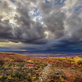 The Rocky Pathway by Ron Day