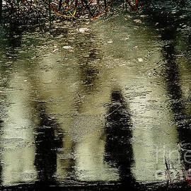 Frozen pond  # 3. by Alexander Vinogradov