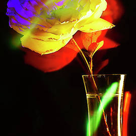 THE ROSE in A GLASS VASE. by Alexander Vinogradov
