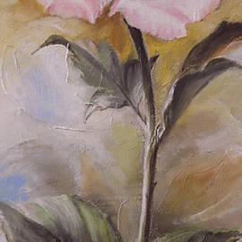 Sorin Apostolescu - The Rose
