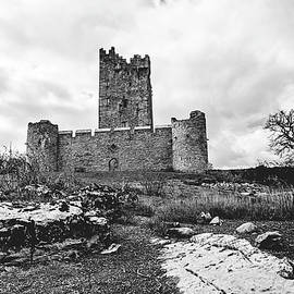 The Ruins of Ross Castle by Scott Pellegrin