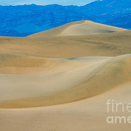The Sands of Time by Stephen Whalen