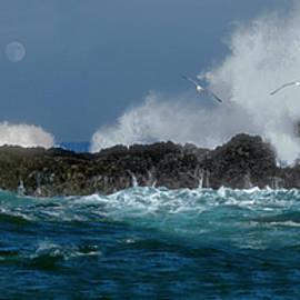 The Sea at Cape Perpetua by Phil Jensen
