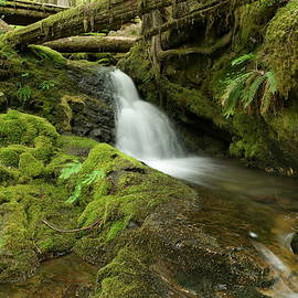 The serenity of a small waterfall by Jeff Swan