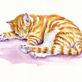 Debra Hall - The Sleepy Kitten