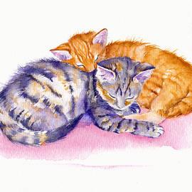 The Sleepy Kittens by Debra Hall