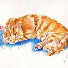 Debra Hall - The Sleepy Marmalade Cat