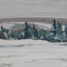 Francois Fournier - The Snowy Field