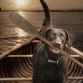 Lori Deiter - The Sporting Dog