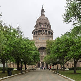 The State Capital Of Texas by Usha Peddamatham