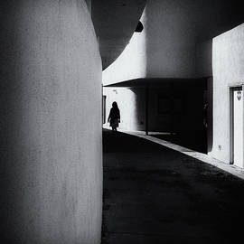 The Stranger - Joseph Smith