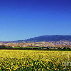 Janice Rae Pariza - The Sunflower Field
