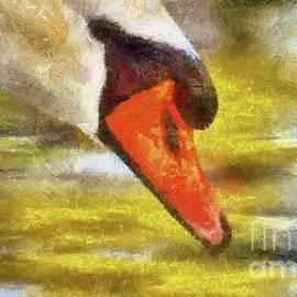 The Swan by Sarah Kirk - Sarah Kirk