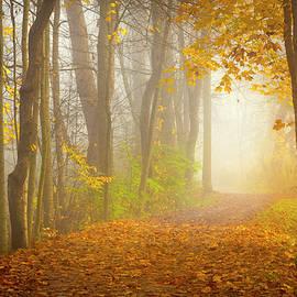 Matt Shiffler - The Towpath Trail