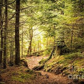 Jan Mulherin - The Trails of Baxter State Park