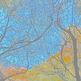 Digital art of Autumn Woods by Loretta S