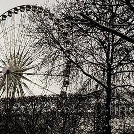 The Tuileries Garden. by Alexander Vinogradov