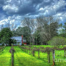 Reid Callaway - The Vineyard House Landscape Photography Art