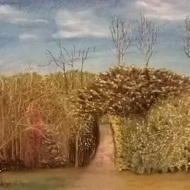 Junko Schettino - The Vineyard Road