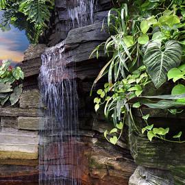 Judy Johnson - The Waterfall