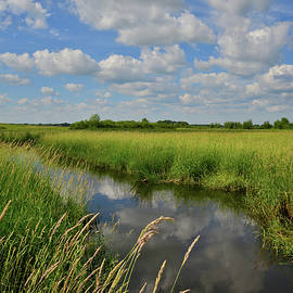 Ray Mathis - The Wetlands of Hackmatack National Wildlife Refuge