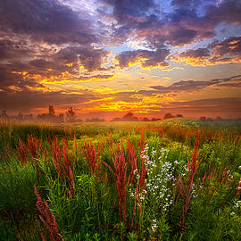 Phil Koch - The Whispered Voice Within
