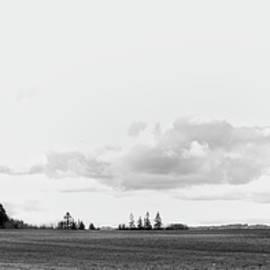 The White Barn - Rebecca Cozart