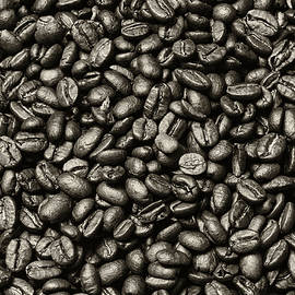 The Whole Bean by Andy Crawford
