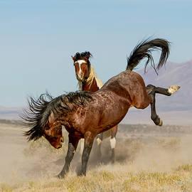 The Wild West by Kent Keller