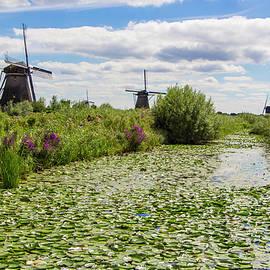 Venetia Featherstone-Witty - The Windmills of Kinderdijk in the Netherlands