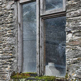 The Window by Andrew Wilson