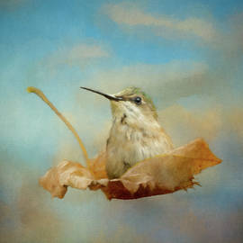 Jai Johnson - The Winds of Fall 1