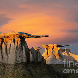 The Wings Of The Bisti by Bob Christopher