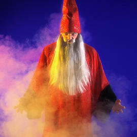 The Wizard by Kim Lessel