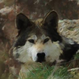 Ernie Echols - The Wolf DA