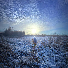 Phil Koch - Therefore We Do Not Lose Heart
