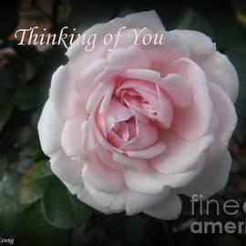 Lingfai Leung - Think of You Rose