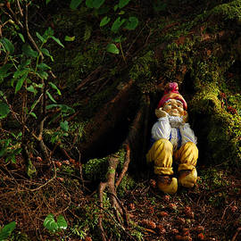 Thinking Gnome by Harry Spitz