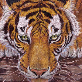 Thirsty Tiger by Svetlana Ledneva-Schukina