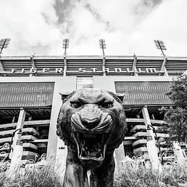 Scott Pellegrin - This is Where the Tigers Play - BW