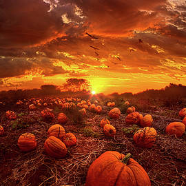 Phil Koch - This Our Town of Halloween