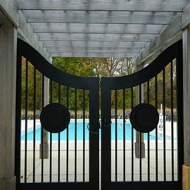 This Way to The Pool by Arlane Crump