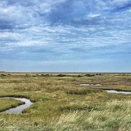 Thornham Marshes, Norfolk