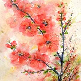 Bette Orr - Thorny Quince