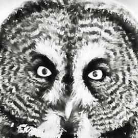 Those Eyes by Lori Dobbs