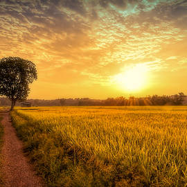 Kumar  Annamalai - Thousand Steps From Home